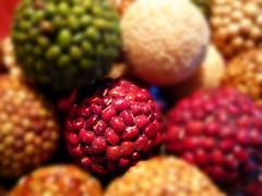 Seeds (ccurtiz) Tags: macro seeds chicoca canonpowershotsd950is