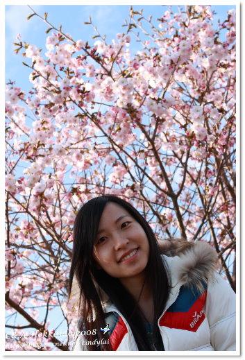 Hokkaido_1303