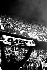 A Massa (nidin sanches) Tags: minasgerais brasil gente cam estadio grupo belohorizonte esporte futebol galo torcida arquibancada mineirão centenário torcedor torcedores galoucura atleticomineiro amassa atleticanos governadormagalhãespinto