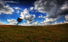 ___|______________ | HDR (u n c o m m o n) Tags: sky clouds landscape 350d skne sweden tripod canon350d frontpage hdr havng lucisart uncommon skane photomatix sigma1020 canon350 tonemapped 3exp landscapeset marcusclaesson