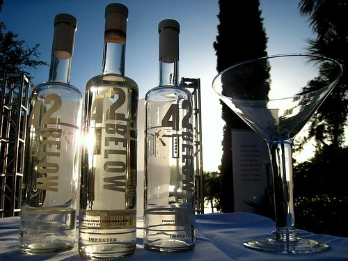 Artsy Bottles of Vodka