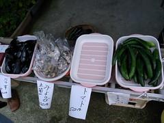 相倉合掌集落で色々な野菜が