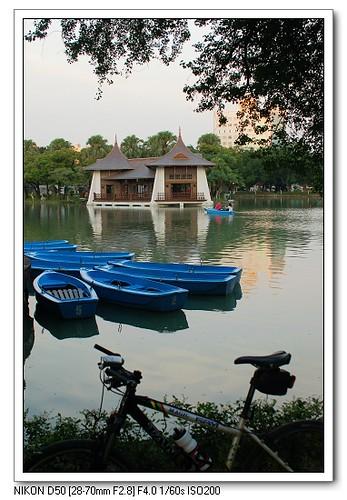 台中公園划船