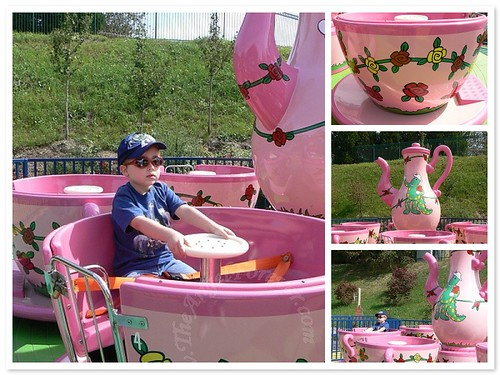 Dorothy's Rosy Tea Cup Ride Time