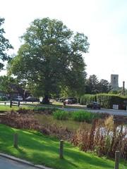 Aldbury, (Another View Mrs P!) Hertfordshire, ...