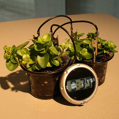 soil-powered clock by marieke_stap
