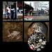 Complete Album Graphics Package