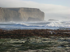 MartinsBeach_2007-068 (Martins Beach, California, United States) Photo
