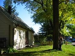 IMG_0308 (YAT.1011) Tags: autumn