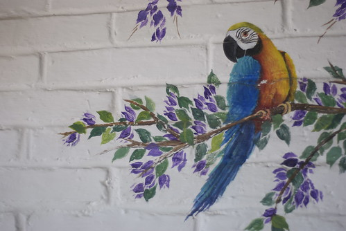 That is a faux parrot! But who cares? I love the idea of painting in the wildlife you want to highlight. Note to self: paint burros and goats on the walls at Two Terrier Vineyards.