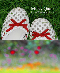 * Wish you were here (Missy | Qatar) Tags: from red garden shoes you bokeh here doom were ribbon wish 3ala a 3asach ilgoah