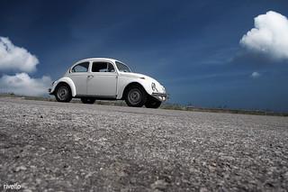 New - Beetle