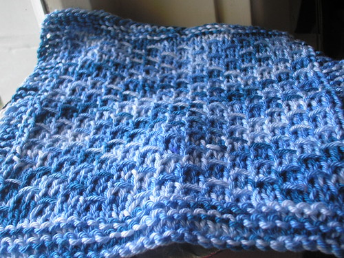 DW dishcloth