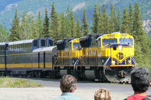 Train pulling into Denali Station