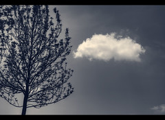 Serenity (VinothChandar) Tags: sky stilllife cloud tree nature monochrome mood peace god calm serenity serene tranquil eternal calmness