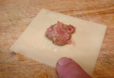 how to cook wonton skin