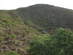 Sheikh (Yusuf Dahir's Somaliland Photos) Tags: somaliland