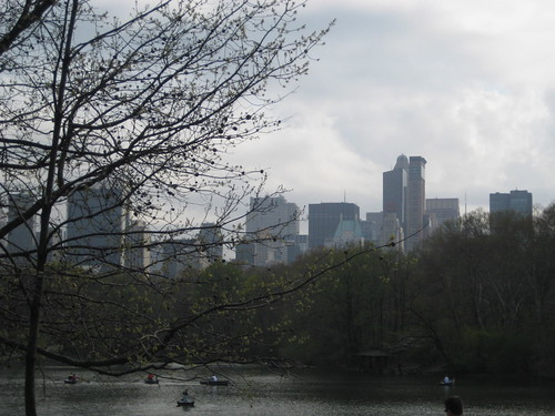 View of NYC from Central Park