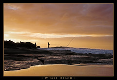 Y-e-l-l-o-w (l plater) Tags: seascape clouds sunrise landscape dawn rocks waves searchthebest sydney australia soe northernbeaches whalebeach bej the4elements abigfave platinumphoto anawesomeshot flickrelite lplater almosteverything unlimitedphotos thebestwaterscapes goldenvisions