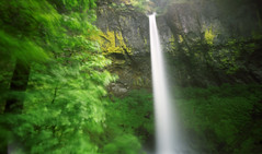 The dancing tree at Elowah, 240 seconds (Zeb Andrews) Tags: motion film oregon landscape pinhole waterfalls pacificnorthwest columbiarivergorge zeroimage zero69 bluemooncamera elowahfalls zebandrews pinscapes zebandrewsphotography