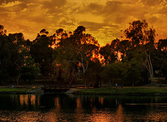 The Park (Mine Beyaz) Tags: california park sunset placentia soe brea gunbatimi artisticexpression abigfave anawesomeshot superaplus aplusphoto diamondclassphotographer thebestofday gnneniyisi damniwishidtakenthat flickrlovers minebeyaz guasdivinas