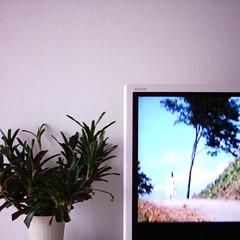 【写真】ミニデジで撮影した室内(リビング)