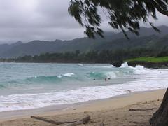 P1010522 (RaySorin) Tags: hawaii april2005