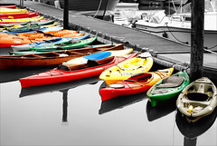 Kayak Slip (floralgal) Tags: seascape water colors marina landscape boats fishing dock kayak harbour canoes boating brightcolors yachts oceans longislandsound westchestercounty boatclub ryenewyork colorselection privatedock coloredboats coloredkayaks