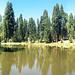 lake-pano