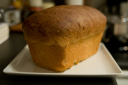 Homebaked Sandwich Bread