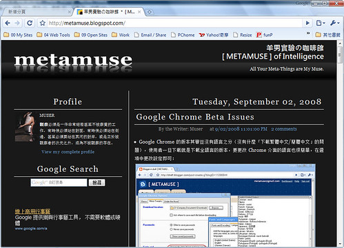 metamuse in chrome in vista