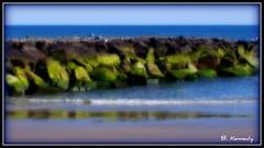 Ocean City Beach - New Jersey **3D Effect** (qparker71 (Brian Kennedy)) Tags: ocean sea seagulls painterly art beach photoshop print newjersey artwork surf waves framedart framed jetty beaches prints oceancity southjersey procesing onde matted postprocessing