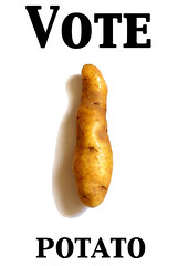 votepotato.jpg© by Haalo