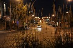 focus after dark (digitalambitions/ Valerie Hogg) Tags: road street light brown ontario canada black cars grass night dark gold lights nightshot streetlights guelph seed headlights