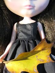 Natural Blythe Glamour 3