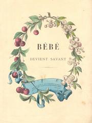 bb savant 4