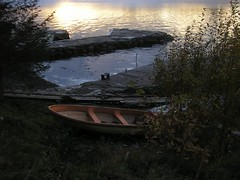 sommer, høst, 2008 102