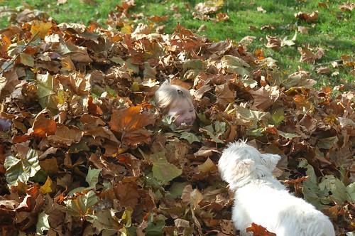 Where's Leda!