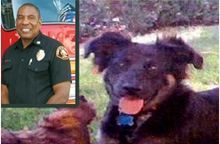 Kinship Circle - 2008-11-14 - Puppy Fatally Beaten By LA Firefighter 02
