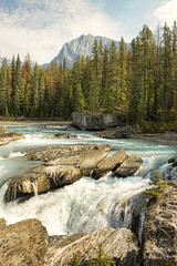 Natural Bridge, Kicking Horse River (sminky_pinky100 (In and Out)) Tags: canada mountains water landscape rockies naturalbridge alberta yohonationalpark personalbest kickinghorseriver 5photosaday fineartphotos omot cans2s citrit eyejewel theperfectphotographer amazingalberta landscapedreams alemdagqualityonlyclub