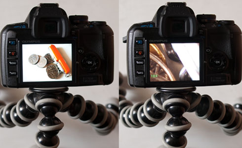 Olympus E-420 DSLR Macro Live View