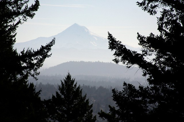 mt. hood from mt. tabor