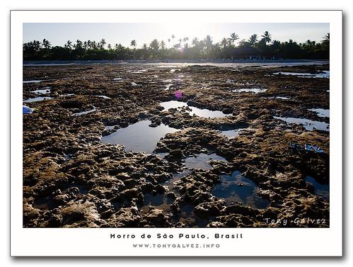arrecifes, mareas y piscinas naturales – modo de uso