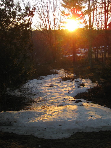 Setting sun reflected on Spring snow melt ~ 24 March 2009