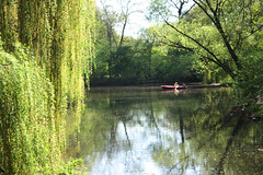 Row your Boat (danielle_b_) Tags: trees lake relaxing weepingwillow waterreflection rowingboat