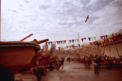 Caleta Portales (fraan castillo) Tags: gaviotas pescador caleta lanchas