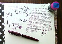 ink fountainpen noodlers