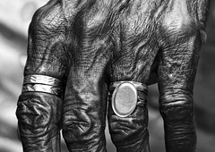 Rings on wrinkled hand, India (Eric Lafforgue) Tags: india closeup democracy hand indian main rings indie indi indien hind indi inde southindia hodu bagues southasia indland  hindistan indija   ndia hindustan  6757  lafforgue   ericlafforgue hindia  bhrat  indhiya bhratavarsha bhratadesha bharatadeshamu bhrrowtbaurshow  hndkastan