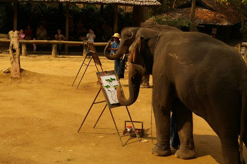 Hong painting elephant