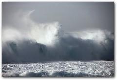 Banzai Pipeline (chgroth) Tags: blue water hawaii surf ehukaibeachpark oahuhawaii